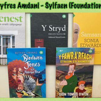 Llyfrau i ddysgwyr / Books for Learners